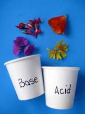 acids-and-bases-min