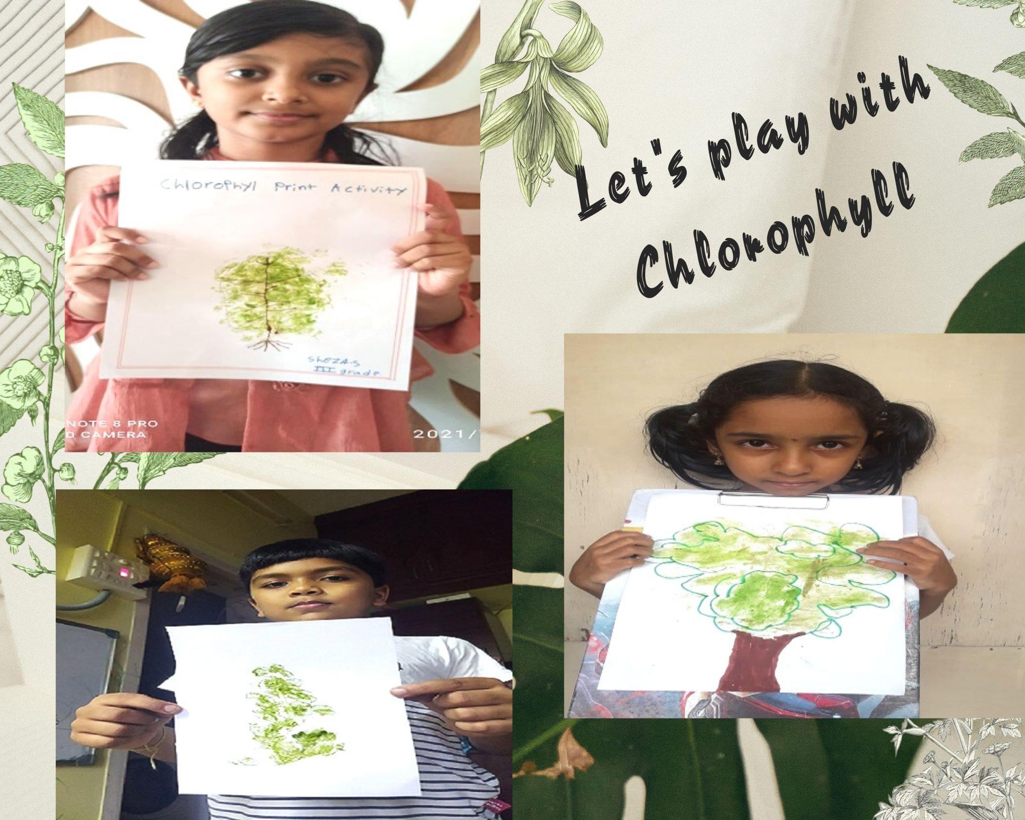 testing for chlorophyll